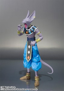 Beerus baille